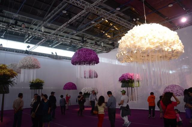 2013Bloom台灣國際蘭展 (26)