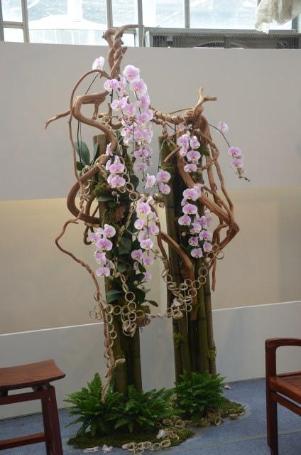 2013Bloom台灣國際蘭展 (79)