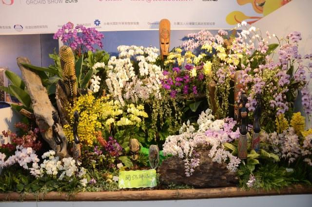 2013Bloom台灣國際蘭展 (160)