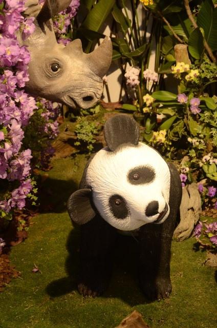 2013Bloom台灣國際蘭展 (177)