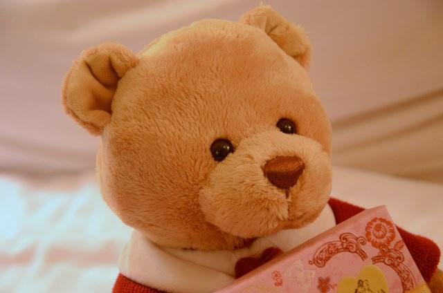 GODIVA 2014 情人節小熊 (20)