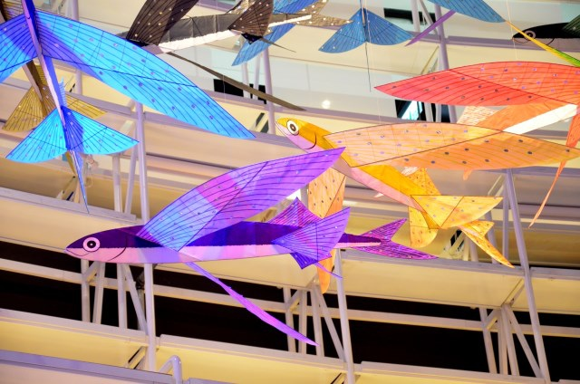 黃景楨 星空燦爛的飛魚祭 (2)