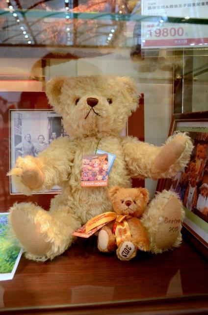 TEDDY (10)