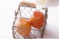 雞蛋4.jpg