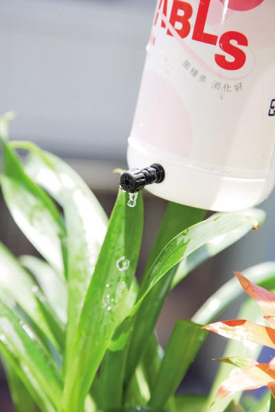 澆水3.jpg