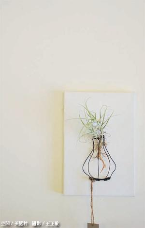 花草佈置2