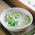 水生植物6