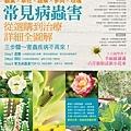 花草62-300