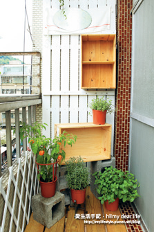 廚房花園4