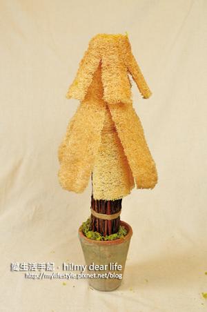 絲瓜聖誕樹6