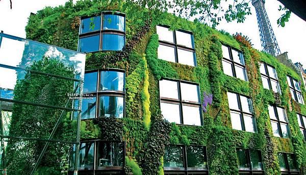 我愛綠屋頂
