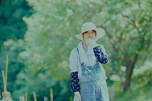 little_forest_summer_006