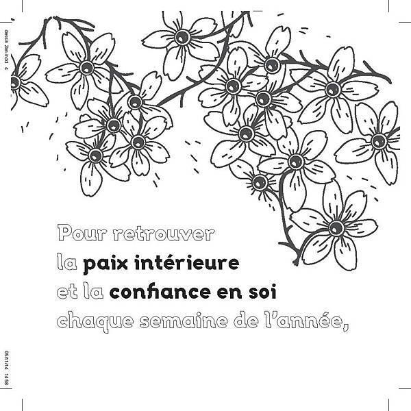 法式繽紛浪漫:畫出禪意靜心的紓壓冥想2-3