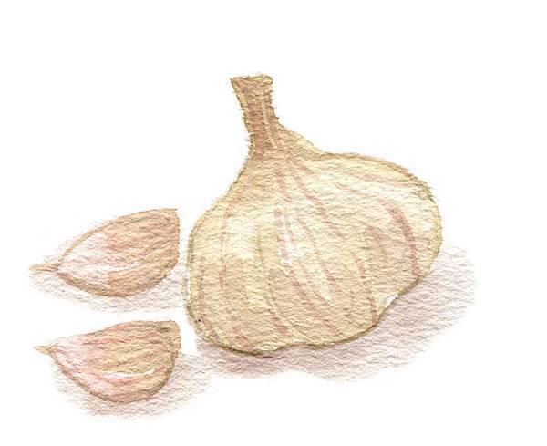 p67-1蒜