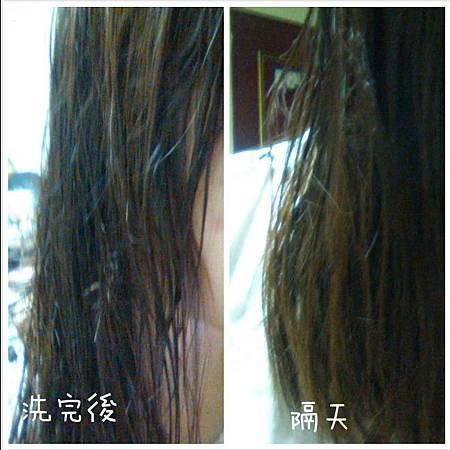 GIOVANNI極緻蓬盈洗髮精3.JPG