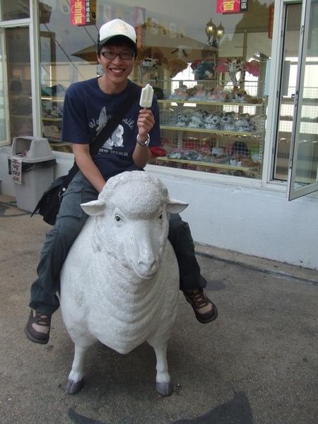 12羊咩咩冰棒.JPG