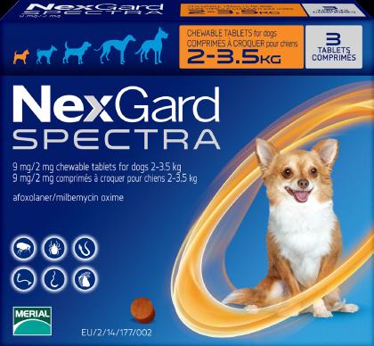 迷你犬2-3.5公斤.png