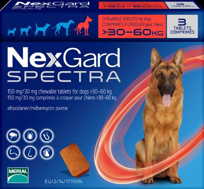 超大型犬30-60公斤.png