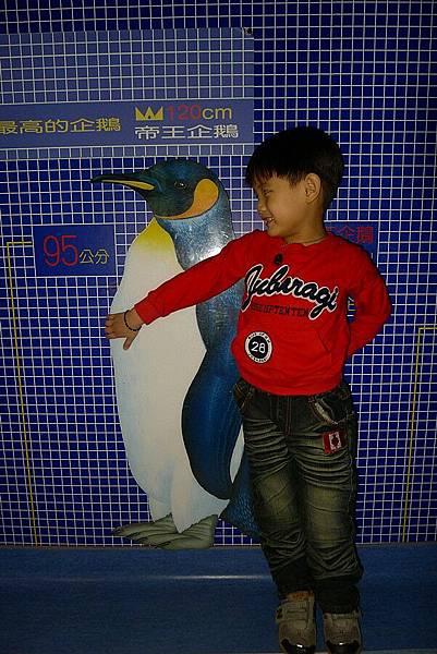 2011-11-12_203.jpg