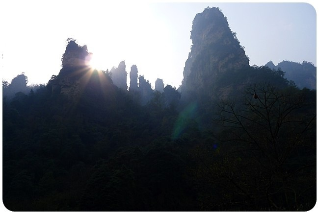 2011-12-15_1277