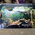 P1000951 廣西 碩龍 通靈峽谷