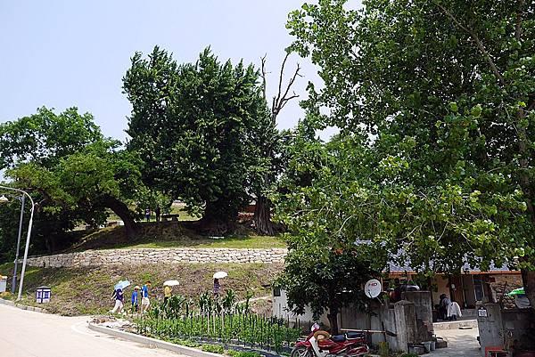 20140619 110608 良洞民俗村.JPG