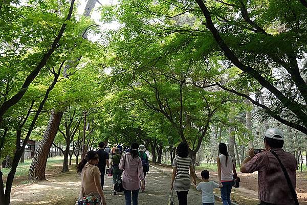 20140619 133235 大陵苑天馬塚.JPG