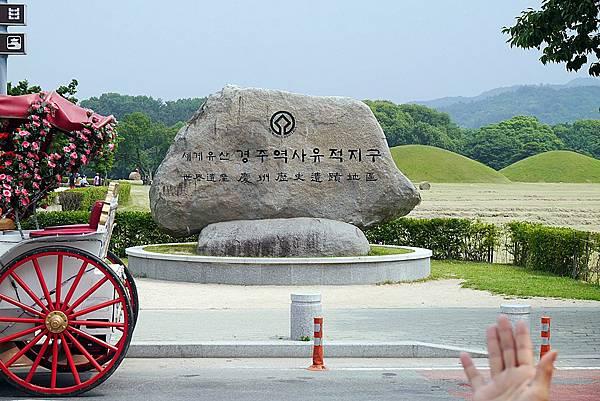 20140619 141749 大陵苑天馬塚.JPG