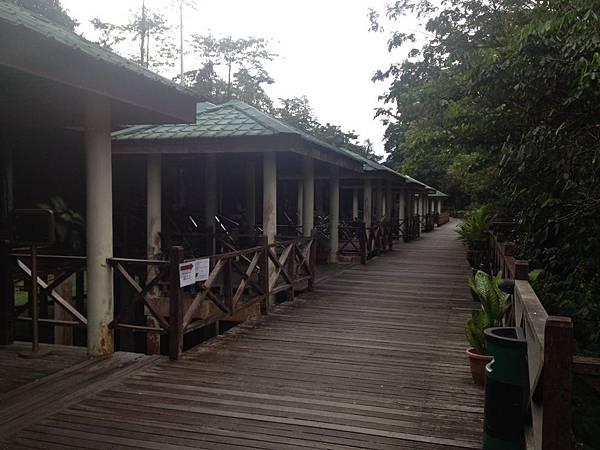 姆魯渡假村飯店 (5)