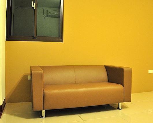 時尚簡約雙人沙發005.JPG