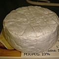 Brie Cheese - 長相