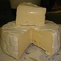 Brie Cheese - 剖面照