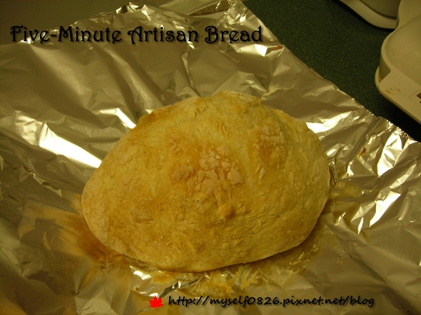Five-Minute Artisan Bread 1