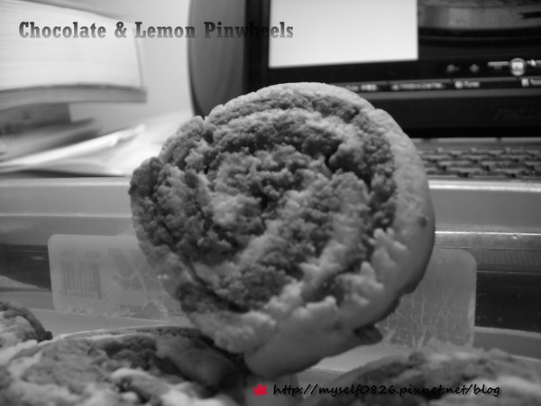 Chocolate & Lemon Pinwheels 1