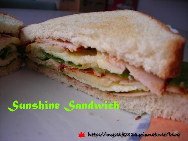 Sunshine Sandwich 2