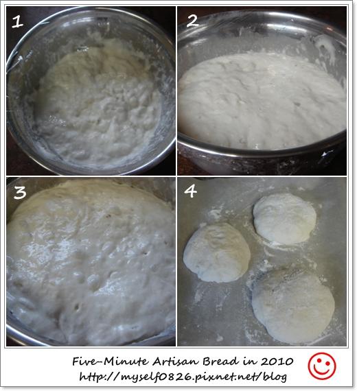 5min bread 2010 1.jpg