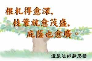 根札得愈深,枝葉就愈茂盛,庇蔭也愈廣。