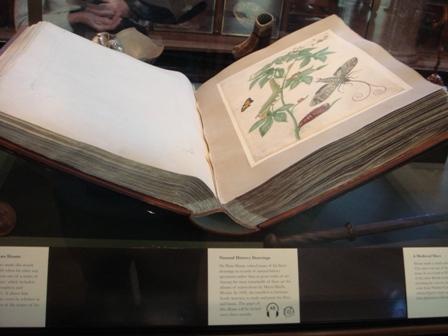 自然的歷史畫冊