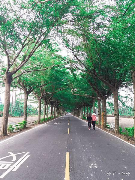 潮州泗林綠色隧道_66.jpg