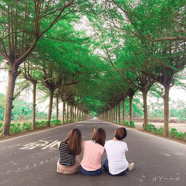 潮州泗林綠色隧道_9646.jpg