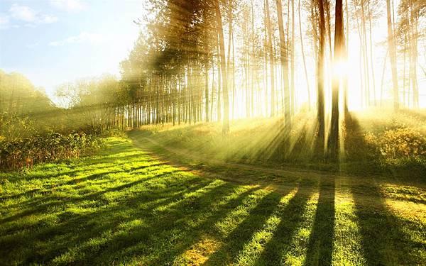 sunlightrays
