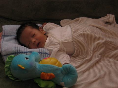 baby Derrick 249.jpg