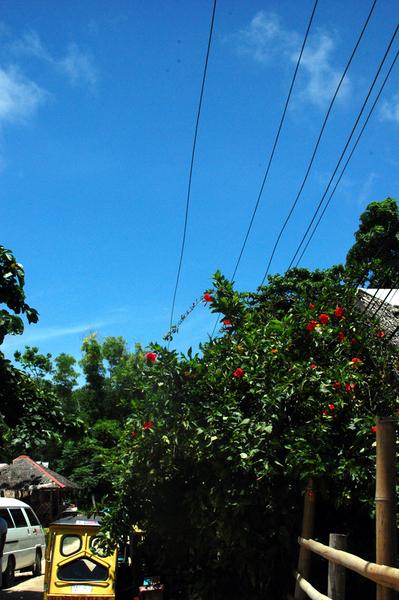 Boracay長灘島遊記照片 -12.JPG