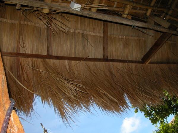 Boracay長灘島遊記照片 spide house-2
