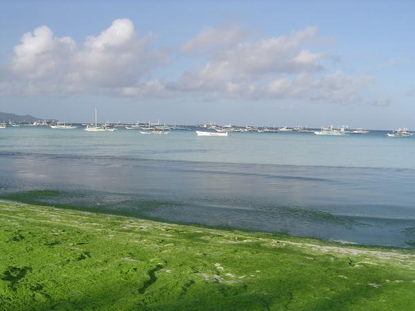 Boracay長灘島遊記照片Terraces-18.jpg
