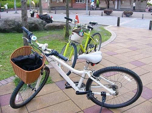 民宿主人借我們的捷安特腳踏車