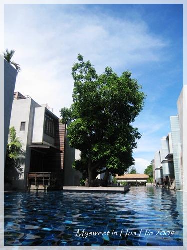 Hua Hin 華欣 Let's Sea 游泳池 2