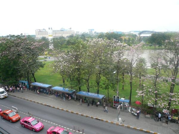 曼谷Chatuchak公園