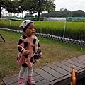 IMG_20141114_160341.jpg