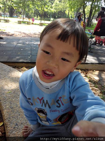 IMG_20150329_105927.jpg